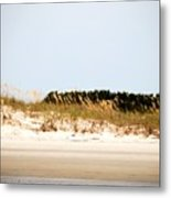 Jekyll From The Water Metal Print