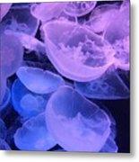 Jellyfish #3 Metal Print