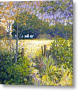 Jeremiahs Field Metal Print by Kevin Lawrence Leveque