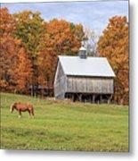 Jericho Hill Vermont Horse Barn Fall Foliage Metal Print