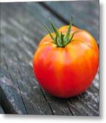 Jersey Fresh Garden Tomato Metal Print