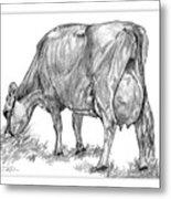 Jersey Milking Cow Metal Print