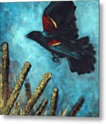 Jewel Among The Cattails Metal Print