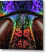 Jewel Beetle Detail Metal Print