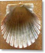 Jewels Of The Sea - Muted Jade Metal Print