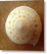 Jewels Of The Sea - Tiger's Eye Swirl Metal Print