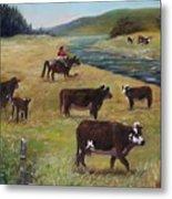 Jim's Cattle Metal Print