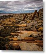 Joggins Fossil Cliffs Metal Print
