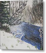 Johnson Vermont In Spring Snow Storm Metal Print