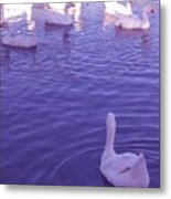 Join Us Blue Cruise Metal Print