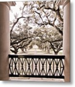 Josephine's View Of Oak Alley Plantation Metal Print