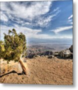 Joshua Tree 39 Metal Print