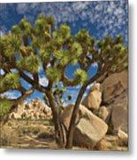 Joshua Tree And Blue Sky Metal Print