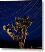 Joshua Tree And Star Trails Metal Print