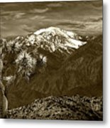 Joshua Tree At Keys View In Sepia Tone Metal Print