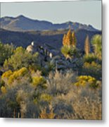 Joshua Tree National Park In California Metal Print by Christine Till
