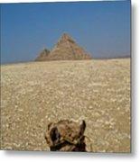 Journey Into The Desert Metal Print