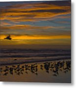 Joyful Gathering Metal Print