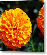 Joyful Orange Floral Lace Metal Print