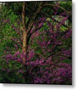Judas In The Forest Metal Print