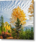 Jughandle Mountain Metal Print