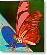 Julia Heliconian Butterfly In Iguazu Falls National Park-brazil Metal Print