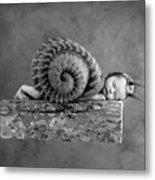 Julia Snail Metal Print by Anne Geddes