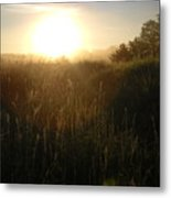 June Sunrise Over Dew On Grass Metal Print