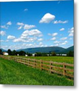 June Valley Metal Print