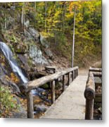 Juney Whank Falls And A Place To Rest Metal Print