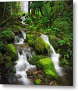 Jungle Falls Metal Print
