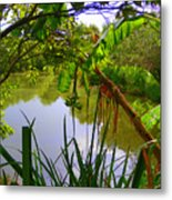 Jungle Garden View Metal Print