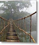 Jungle Journey 2 Metal Print by Skip Nall