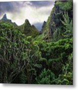 Jungle Mountain Metal Print