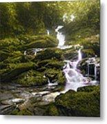 Jungle Riverflow Scene Metal Print