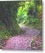 Jungle Trail Metal Print