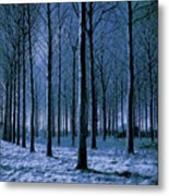 Jungle Trees In Blue  Metal Print