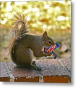 Junk Food Squirrel Metal Print