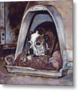 Junkyard Dog Metal Print by Harvie Brown
