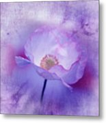 Just A Lilac Dream -3- Metal Print by Issabild -