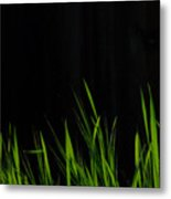 Just A Little Grass Metal Print
