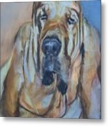 Just Another Magic Bloodhound Metal Print