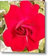 Just Another Rose Metal Print