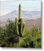 Just Arizona Metal Print