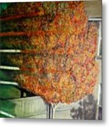 Just Before Fall Metal Print