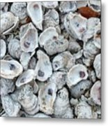 Just For The Shell Of It Metal Print