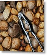 Just Nuts Metal Print