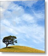 Just One Tree Hill Metal Print
