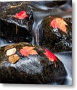 Kadunce River Metal Print