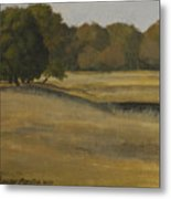 Kanha Meadows Metal Print